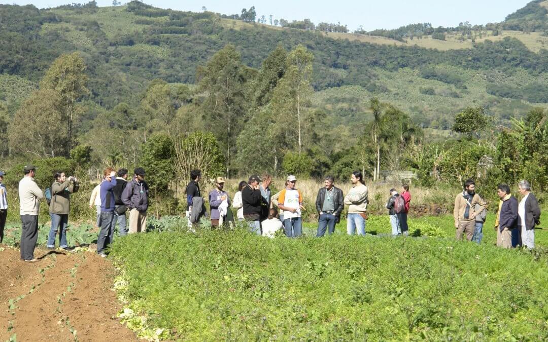Jovens e mulheres agricultores visitarão experiências em agricultura sustentável