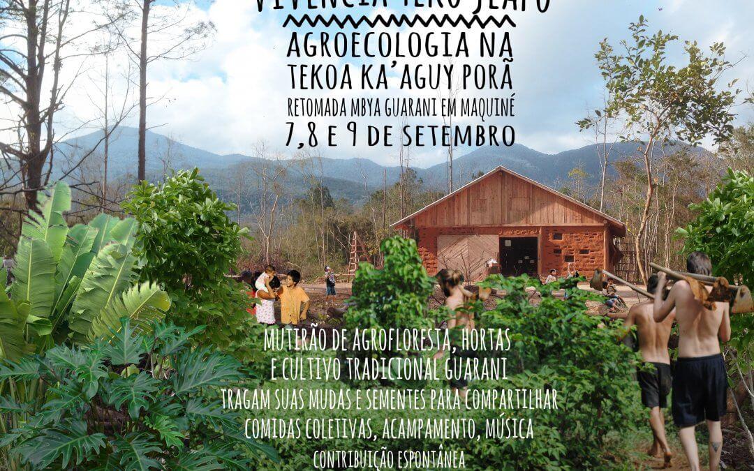 Vivência Intercultural na Escola Mbyá Guarani Teko Jeapo