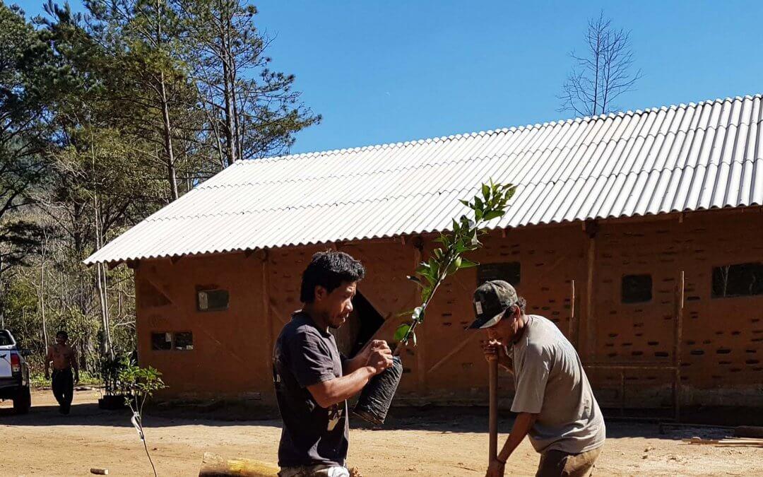 Encontro Mbyá Guarani vai ter Vivência intercultural Agroecológica