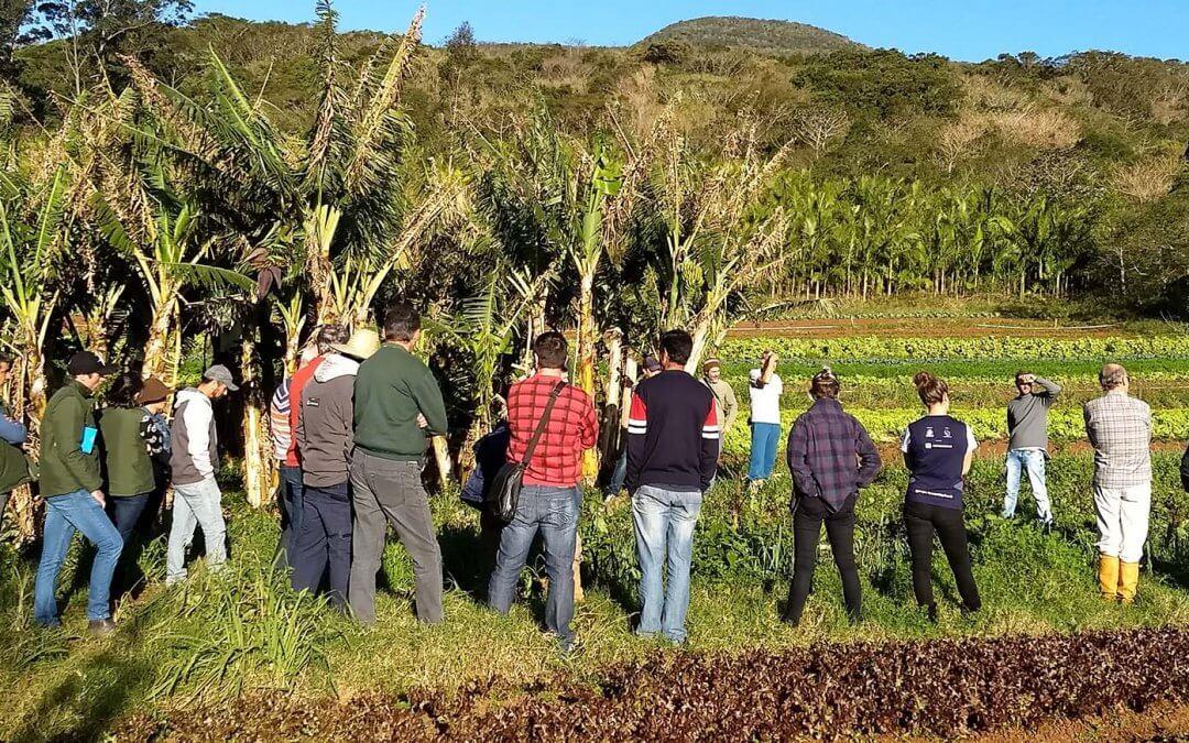 Oficina para Agricultura Familiar trata sobre princípios básicos da Agroecologia