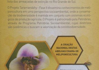 Meliponicultura