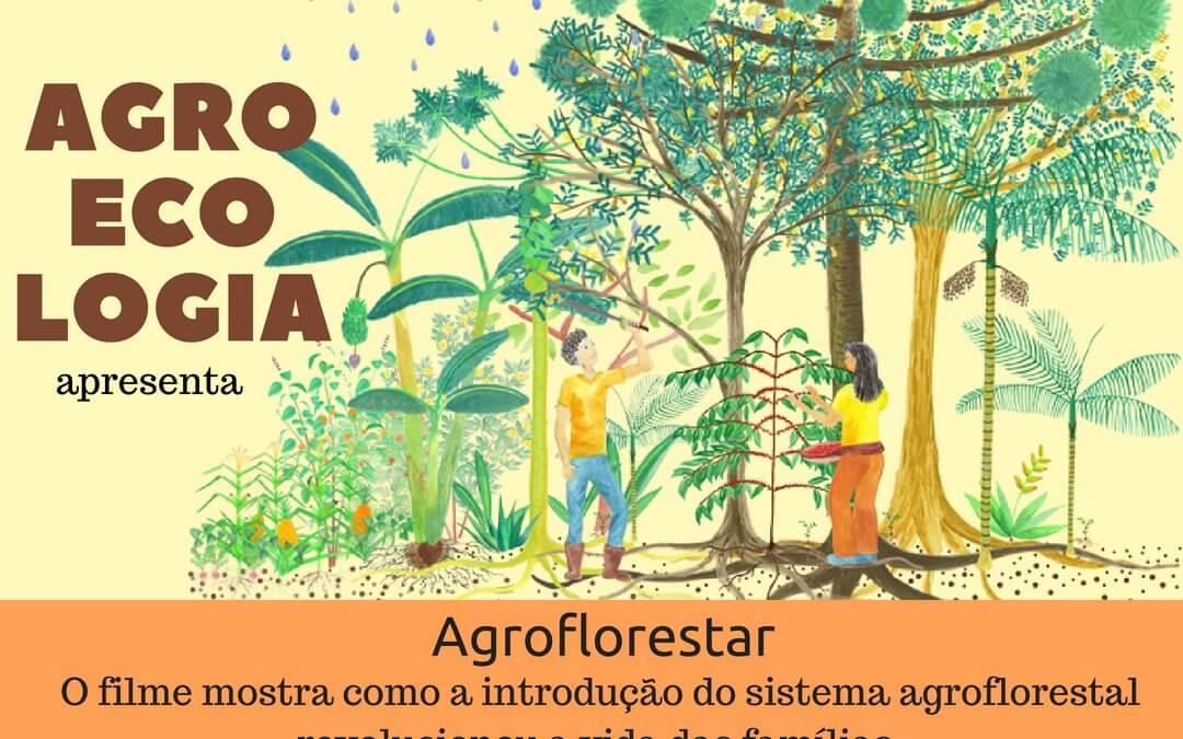 Cine e Agroecologia