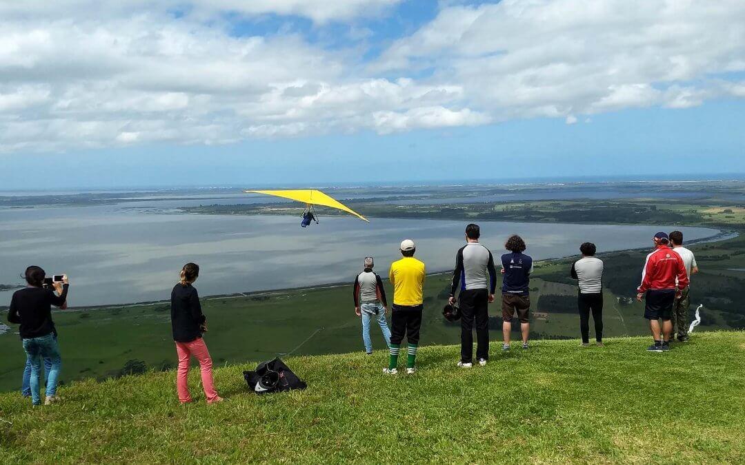 Prática de voo livre ajuda a reforçar reflorestamento de espécie em processo de extinção