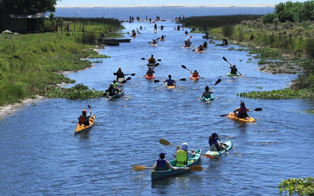 Projetos patrocinados pela Petrobras mobilizam a sociedade para celebrar os Dias Mundiais das Florestas e da Água
