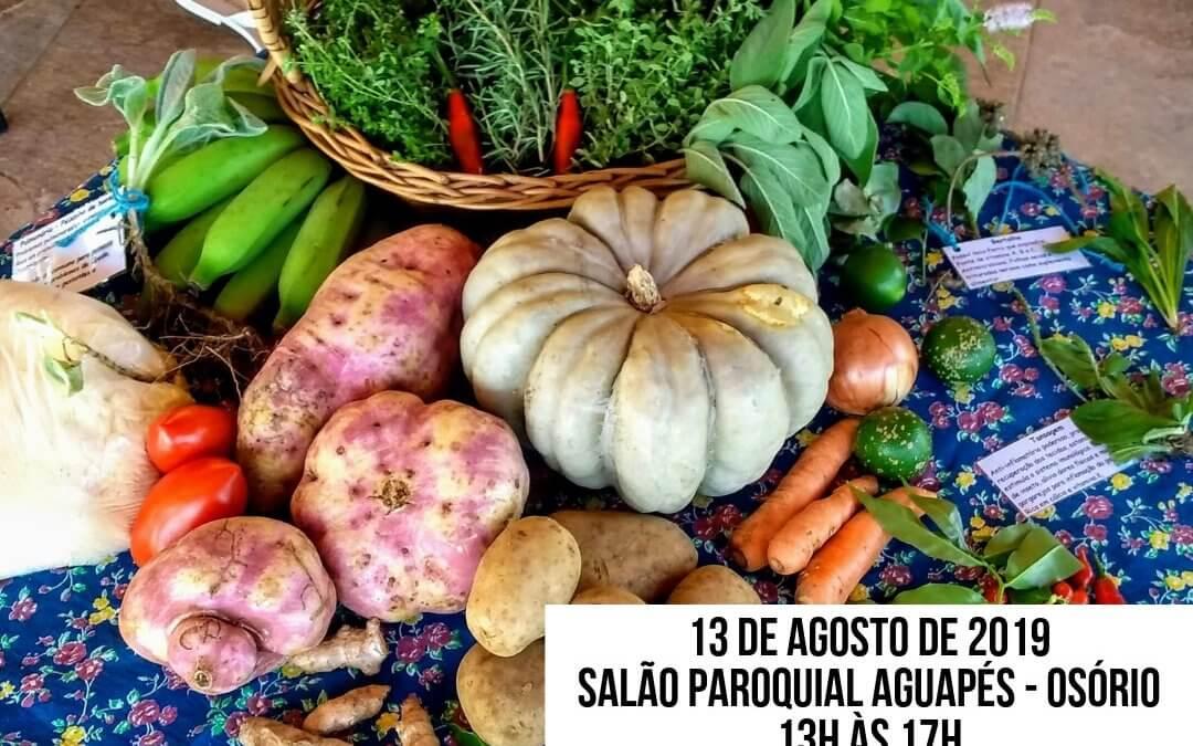 Oficina Mulheres na Agroecologia – 3º Encontro