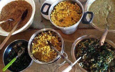 Próxima Oficina de Culinária e Agroecologia unirá Saberes e Sabores Mbyá Guarani com as PANC